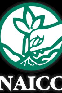 naicclogoedit 1 200x300 - 2020 NAICC Annual Meeting