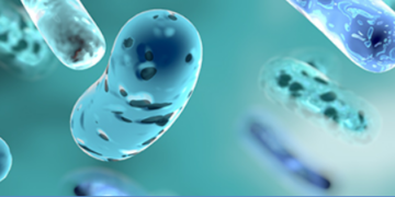Microbiome Picture 360x180 - Microbiome