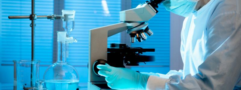 Pathology - Histology and Pathology