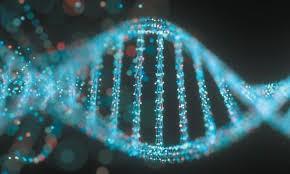 Gene Tox - Genetic Toxicology