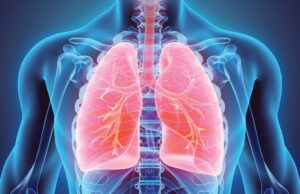 Lungs 300x194 - Safety Pharmacology
