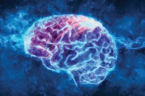 brain 300x199 - Safety Pharmacology