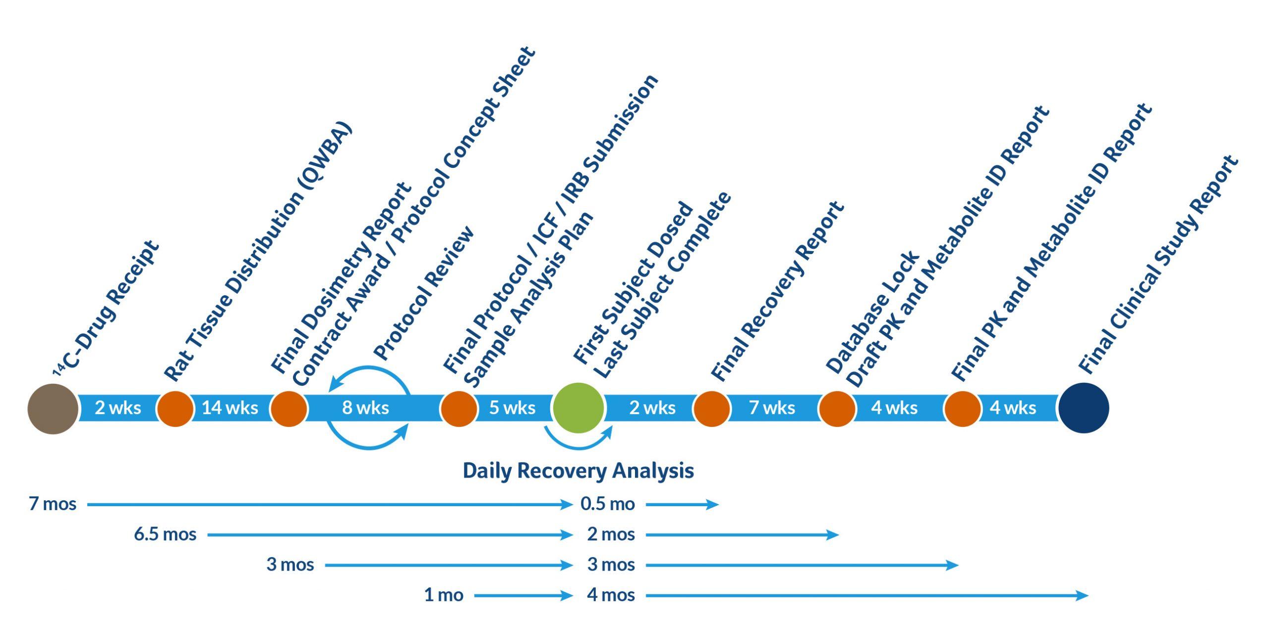 Human hAME Study Timeline 1 scaled - hAME Study Services