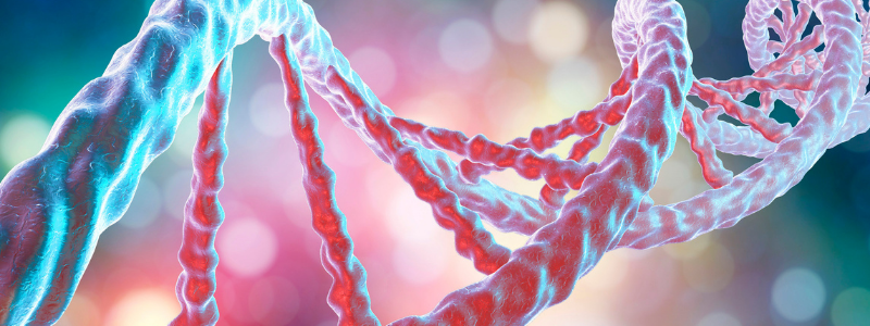DNA Web Page Inserts 800 x 300 - Biomarker Discovery
