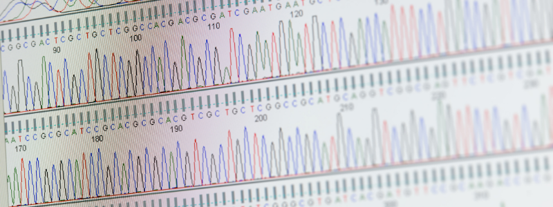 Sequencing 2 - Cell-Free DNA Methylation Sequencing